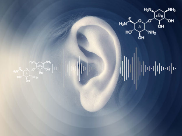 Ototoxicants – what are they and how may they worsen hearing loss in the workplace?